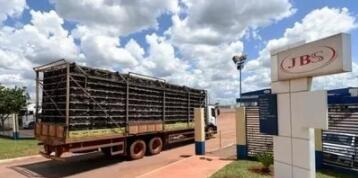 巴西JBS子公司将通过京东商城销售猪肉产品!