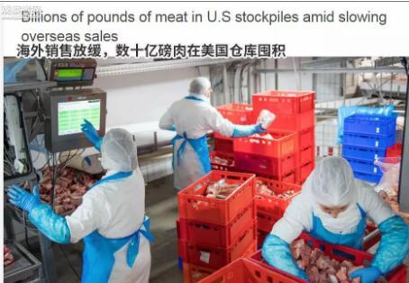 关税大棒打到自己,20多亿斤肉堆在美仓库!