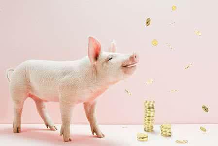 中国养猪业正在形成五大门槛(下)