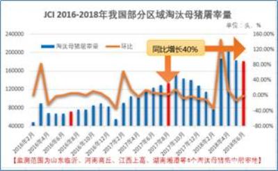 """我国生猪养殖效益全面""""翻红"""",母猪淘汰量仍同比增40%"""
