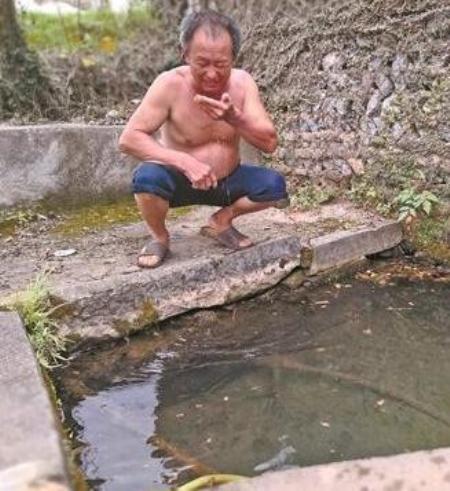 全州:百年老井水有猪尿味,疑与周边养猪场有关....