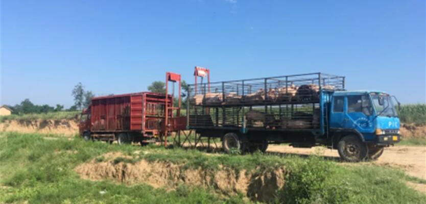 非洲猪瘟防控中的生物安全关键措施