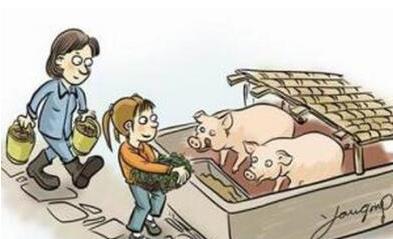 禁养区内养殖场的农民朋友,需要了解五禁养八补偿...