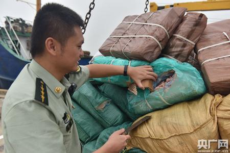 广东海警查获种类繁多涉嫌走私冻品数百吨,案值超千万