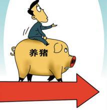 温氏股份:受年内消费旺季的拉动,猪价有望平稳