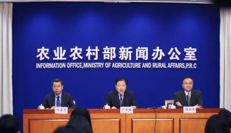 除中国外共有11个国家报告发生3235起非洲猪瘟疫情