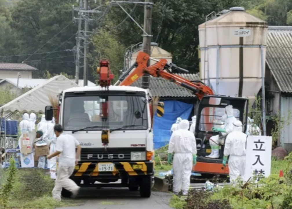 非洲猪疫来袭,老挝暂停进口中国猪肉产品