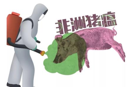 黑龙江官方通报两起非洲猪瘟疫情,死亡22只病猪已扑杀