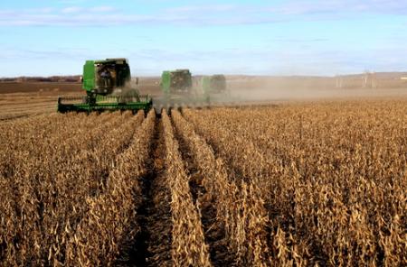 中美贸易战再掀波澜 且看豆粕下周能否企稳?