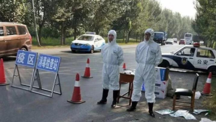 记者深入一线, 追踪非洲猪瘟病毒入境传播之谜