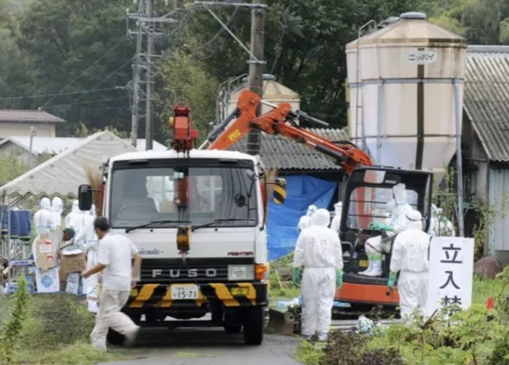 《湖北省非洲猪瘟疫情应急实施方案》的通知