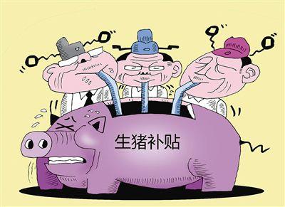 散户补贴仅三小项!生猪补贴还有用吗?