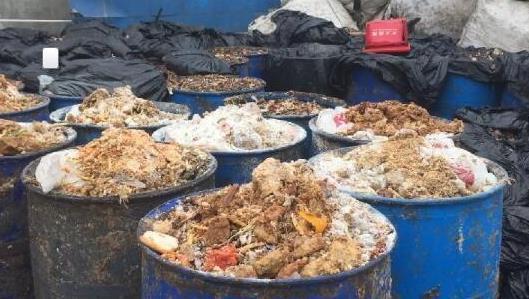 切断非洲猪瘟传播途径,餐厨垃圾无害化处理是关键!