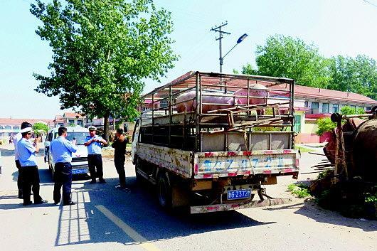 疫区省份非法运输生猪27头,被依法处置