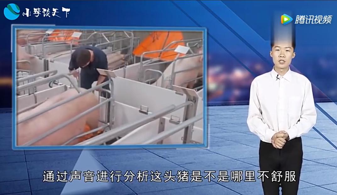 马云投资的养猪场,和普通老百姓的养猪场一样吗?