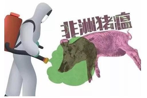 3974起!15个国家中招,非洲猪瘟全球肆虐
