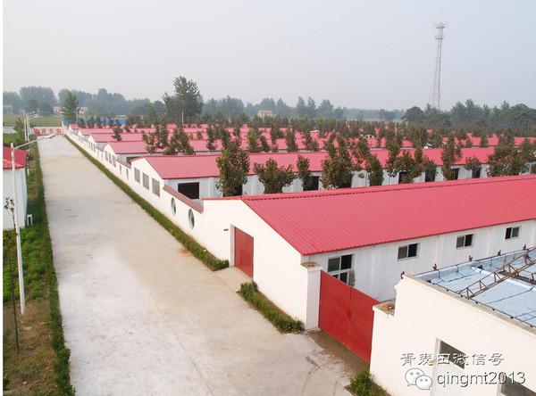 全国生猪存栏量增加306万头;上市公司冰火两重天,猪价最高相差1.72元/公斤
