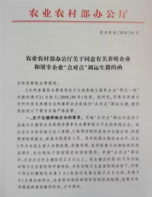 """网传吉林省内可""""点对点""""调运生猪,生猪价格能翻身?"""