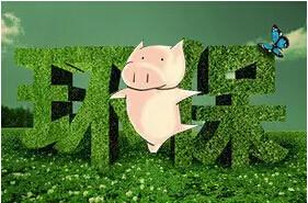 贷款近50亿!支持养殖场环保升级?这个地方这样做!