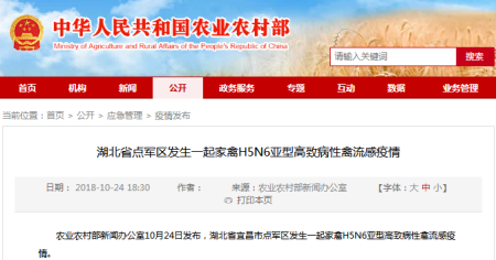 死亡率100%!湖北省点军区发生H5N6亚型高致病性禽流感疫情