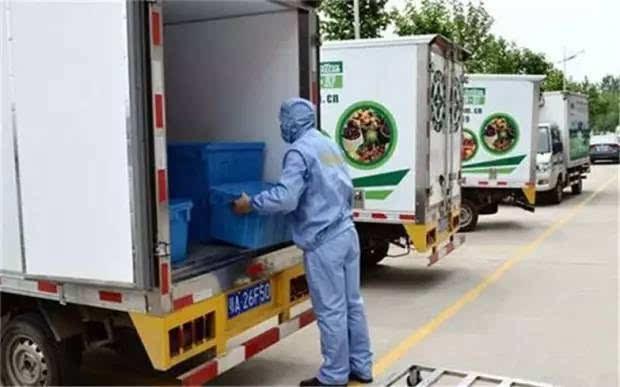 全国活猪转运瘫痪,但冷链运输真的能解决问题吗?真的能有效阻止疫情的扩散?