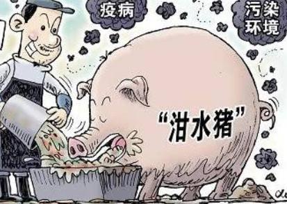太原:举报违规使用泔水喂猪奖励3000元!