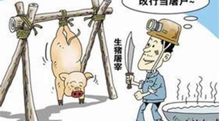 四川省开展为期3个月打击生猪违法屠宰行动