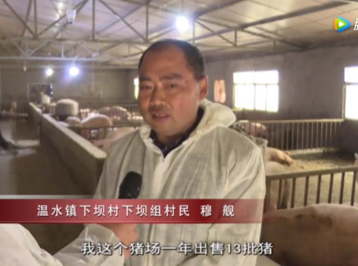 习水德康:104个生猪家庭农场 助力百姓持续增收