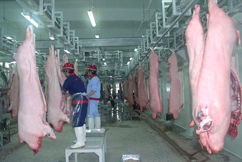 温氏、牧原等20家集团5年将在黑龙江投资超800亿元!生猪禁运下当地打算这样推动猪肉产品走出去