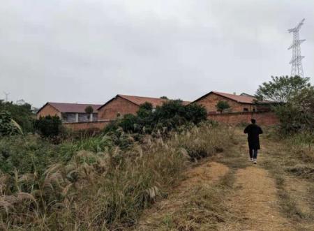 新建猪场污水直排,环保部门展开调查
