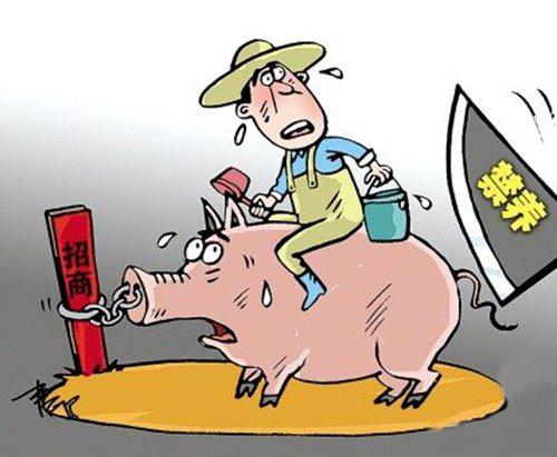 山东平度禁养区内411个养殖场户全关闭