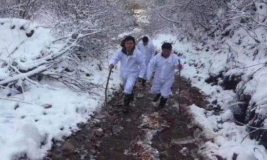 吉林省雪地追凶非瘟彻底消除疫情隐患