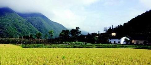 农业农村部公布第八次监测合格农业产业化国家重点龙头企业名单