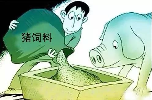 饲料也要检测非洲猪瘟病毒?