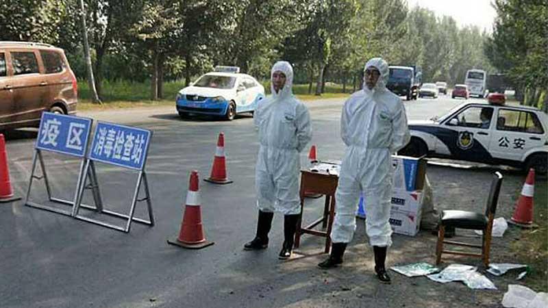 云南省昆明市呈贡区非洲猪瘟疫区解除封锁