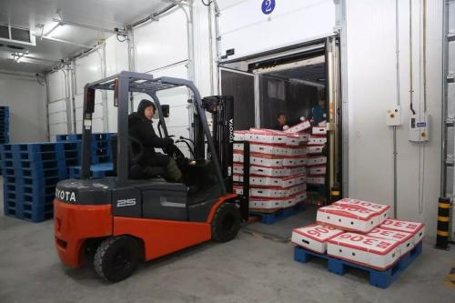 首批出口俄罗斯800吨猪肉,黑龙江生产的猪肉正式进入俄罗斯市场