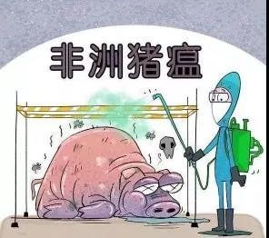 省政协委员汤洋:建立非洲猪瘟防控长效机制,常态化管理!