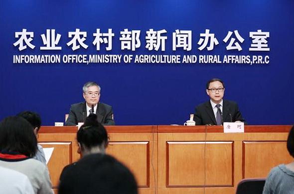 农业农村部:预计春节前生猪价格将保持稳中略降,供应充足