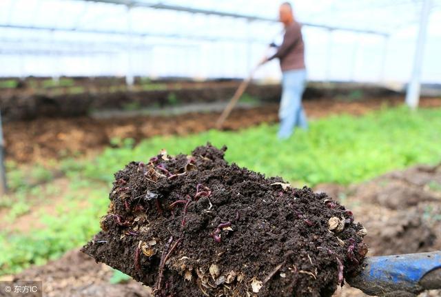 种养结合的关键点——畜禽粪便的发酵