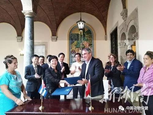 湖南永州引入古巴生物医药集团,中古合作研制非瘟疫苗