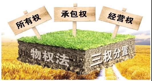 依法保障深化农村土地制度改革,中央一号文件首次提出加快修订物权法!
