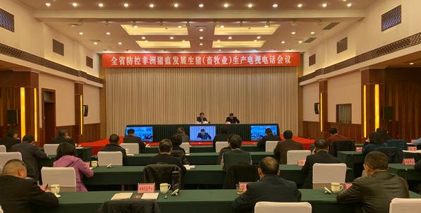四川省政府召开全省防控非洲猪瘟发展生猪(畜牧业)生产电视电话会
