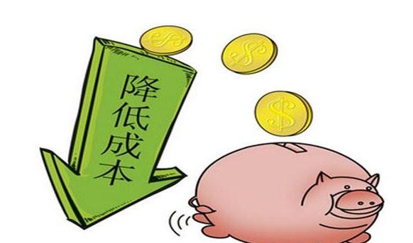 今年养猪两类人会发财,另一类人将血本无归