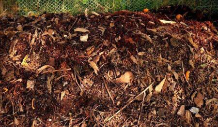 猪场新利润点——清洁牧场有机肥生产
