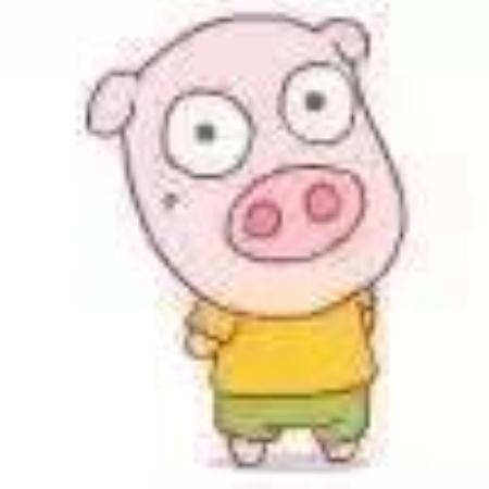 一只猪在派出所的故事!大家好才是真的好