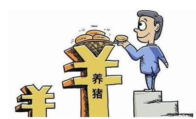 猪市走势:猪价大涨背后的风险与机遇共存!