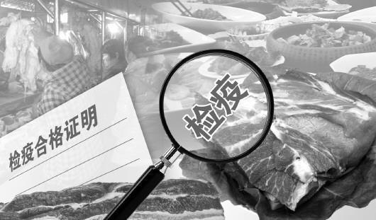 浙江舟山:伪造生猪检疫合格证明千余份 两兽医获刑