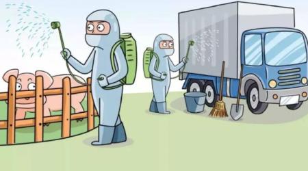关于对广东首例非瘟疫情的诊断、处置过程以及疫点消毒效果评价