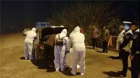 无证偷运256头猪司机明目张胆行贿,小轿车塞满了62头小猪
