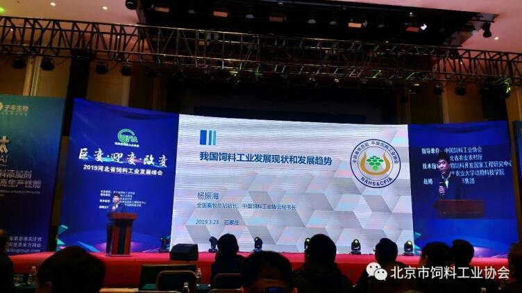杨振海:我国饲料工业发展现状和发展趋势